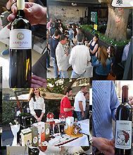 Wine Jam Trandanfilovic bistro