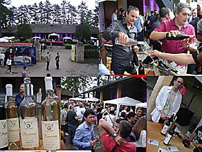 Oplenac Third Festival of wines from Sumadija