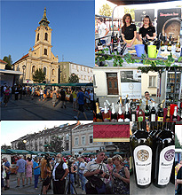 Zemun's Wine Square 2016