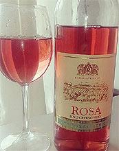 rosa radosavljevic 2016