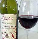 moje vino plantaze